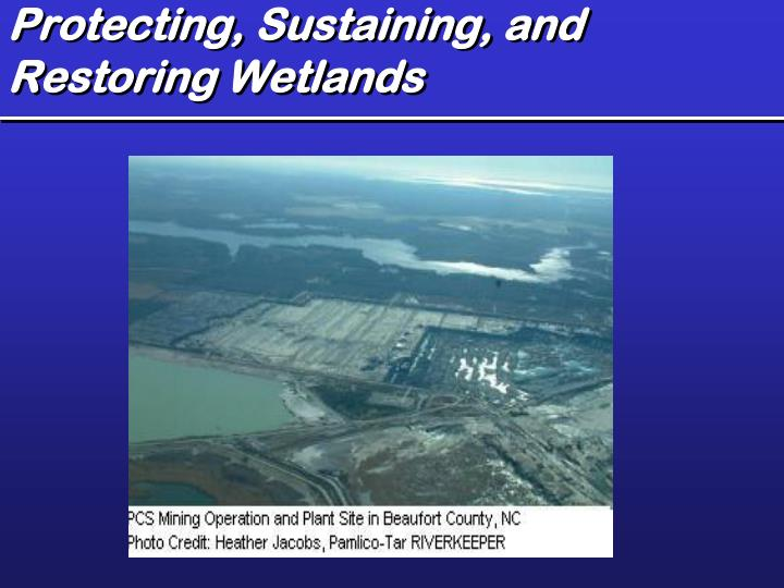 Protecting, Sustaining, and Restoring Wetlands