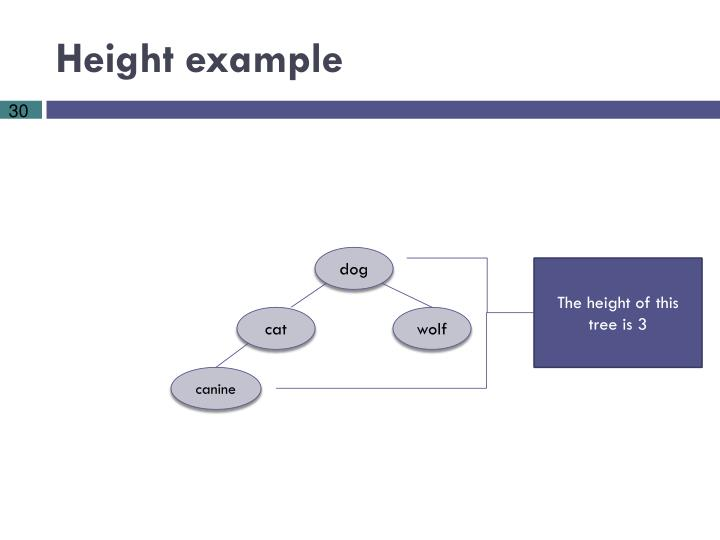 Height example