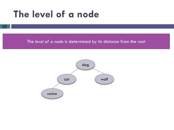 The level of a node