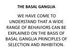 the basal ganglia2