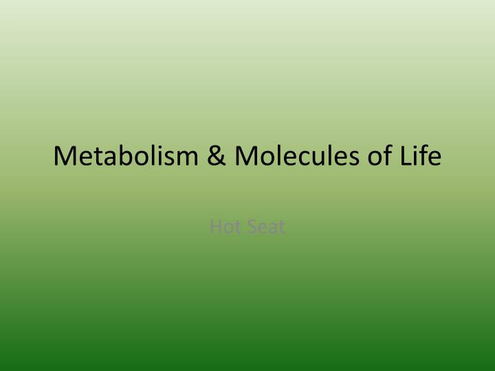 metabolism molecules of life n.