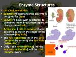 enzyme structures