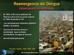 reemergencia del dengue urbanizaci n no controlada