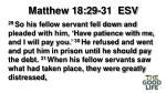 matthew 18 29 31 esv