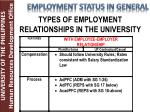types of employment relationships in the university2