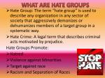 what are hate groups