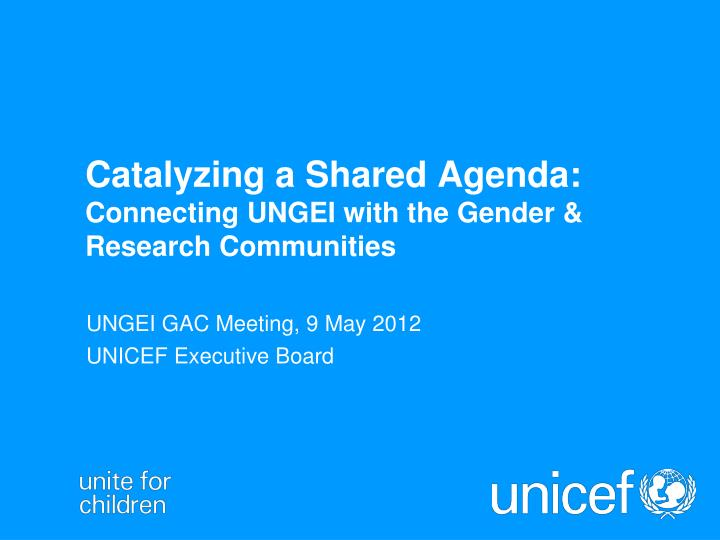 catalyzing a shared agenda connecting ungei with the gender research communities n.