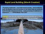 rapid land building marsh creation