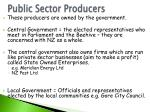 public sector producers