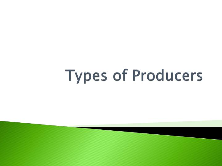 types of producers n.