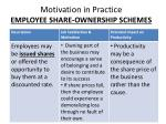 motivation in practice employee share ownership schemes