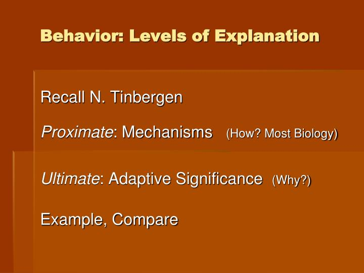 behavior levels of explanation n.