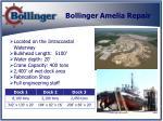 bollinger amelia repair