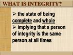 what is integrity