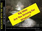 big idea are you striving for wisdom