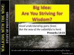 big idea are you striving for wisdom1