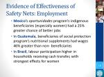 evidence of effectiveness of safety nets employment