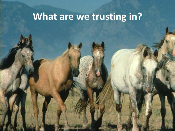 what are we trusting in n.
