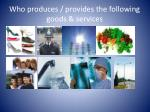 who produces provides the following goods services