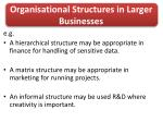 organisational structures in larger businesses1