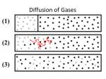 diffusion of gases1