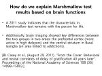how do we explain marshmallow test results based on brain functions