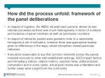 how did the process unfold framework of the panel deliberations