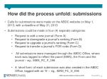 how did the process unfold submissions