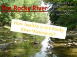the rocky river