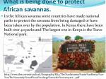 what is being done to protect african savannas