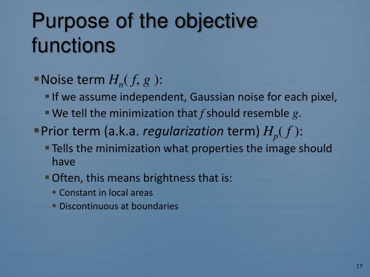 Purpose of the objective functions