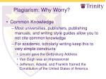 plagiarism why worry8