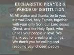 eucharistic prayer words of institution