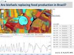 are biofuels replacing food production in brazil