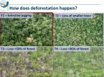 how does deforestation happen