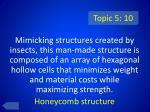 topic 5 10
