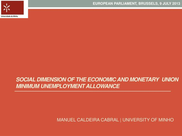social dimension of the economic and monetary union minimum unemployment allowance n.