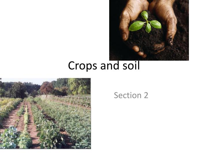 crops and soil n.