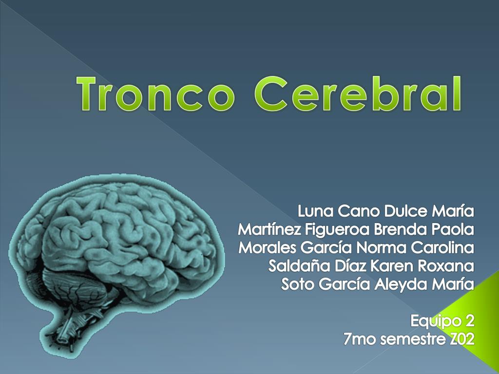 PPT - Tronco Cerebral PowerPoint Presentation - ID:2234980