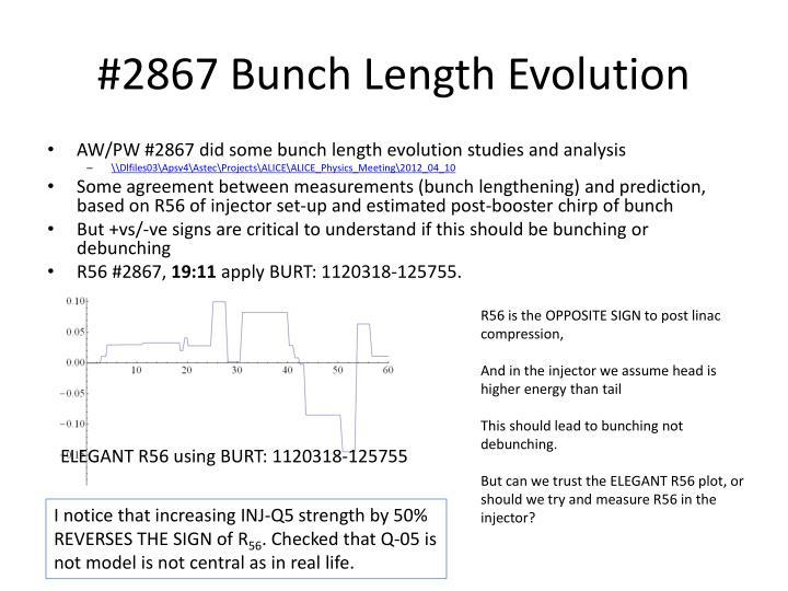 #2867 Bunch Length Evolution