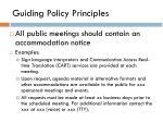 guiding policy principles1