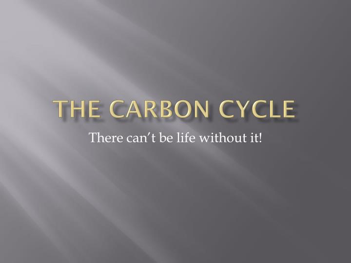 the carbon cycle n.