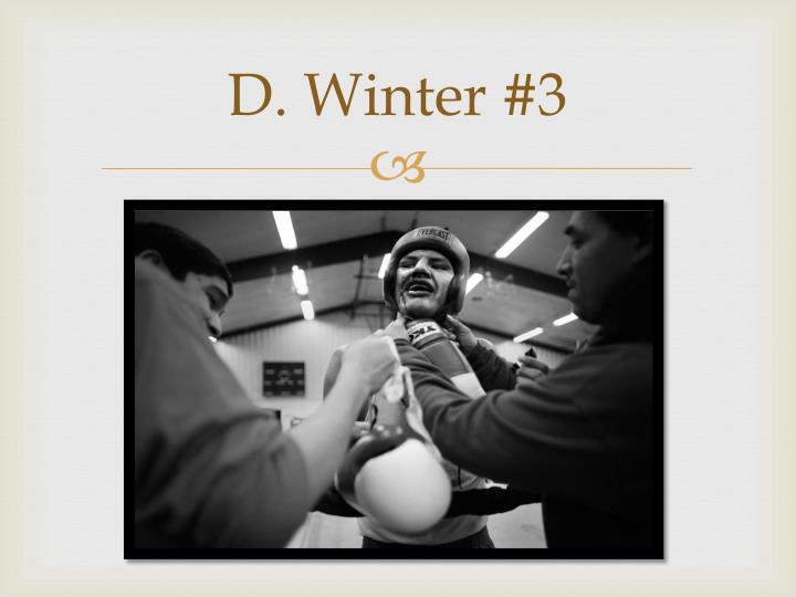 D. Winter #3