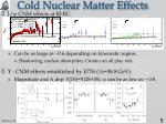 cold nuclear matter effects