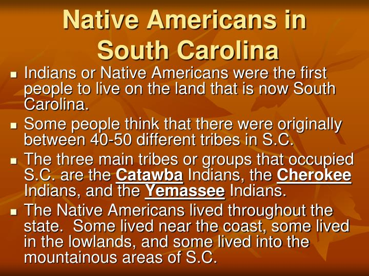 natives and the europeans essay Three worlds, three views three views: culture and environmental change in the long before the arrival of europeans, native people traded items between.
