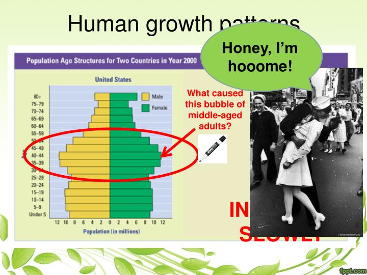 Human growth patterns