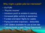 why might a glider pilot be interested7