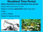 woodland time period