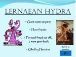 lernaean hydra1