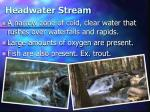 headwater stream